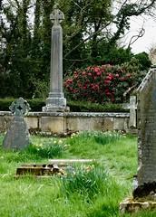 "Earl Grey's Memorial (GATACA1952) Tags: ""howickhallgardensarboretum"" northumberland ""earlgrey"" ""statelyhome"" historical historic garden park arboretum spring plants flowers trees cemetery graveyard churchyard mausoleum"
