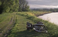 Hadley Dike, Connecticut River (koperajoe) Tags: cyclotourisme goldenhour bicycle westernmassachusetts river 650b dike cyclotouring bikeportrait newengland velo