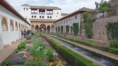 DSCF5511 Generalife, Alhambra, Granada (Thomas The Baguette) Tags: granada spain granadaspain espagne espana alhambra nesrid nesridpalace patiodelosleones lionfountain comares moorish fountains architecture gardens machuca alcazaba