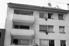 Stadt (tiltdesign2016) Tags: yashicaelectro35gt kodakxtol11 kodaktmax400 wuppertal analogphotography bw stadt street strase stroll sonne sonntag kontrast plustekopticfilm7600ise elberfeld