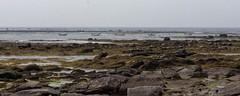 Le Guilvinec (karineslg) Tags: guilvinec paysage bretagne finistere mer