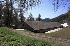 Odonne (bulbocode909) Tags: valais suisse ovronnaz odonne écuries alpages montagnes nature printemps neige mélèzes arbres forêts paysages vert bleu branches chemins