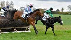 Not a lot in it at the moment (Steve Barowik) Tags: easingwoldraces racecourse grandstand horse jockey trainer groom cropframe saddle plate whip hunter chaser hound pointtopoint point2point stevebarowik barowik 70200mmf28vrii jump fence hurdle canter hack sbofls26 nikond500 quantumentanglement wonderfulworld unlimitedphotos flickrelite dx yorkainstyhunt ladiesopenrace
