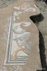 Great Baths, Dion (9).JPG (tobeytravels) Tags: alexanderthegreat alexander3rd macedon macedonia thucydides brasidas orpheus hellenistic cranicos leake thermalbaths hypocaust 2ndcenturybc mosaic asclepios thermae