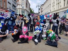 """Leeds furmeet May2018 • <a style=""""font-size:0.8em;"""" href=""""http://www.flickr.com/photos/97271265@N08/41528710104/"""" target=""""_blank"""">View on Flickr</a>"""
