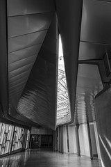 Scottish Parliament Tour May 2018 (61 of 119) (Philip Gillespie) Tags: scottishparliament visitscotparl scotland parliament edinburgh canon 5dsr architecture windows lights tour seats flags dog pets water interior design hills arthurs seat city sky sun art sculpture mono monochrome colour color black white blue green red yellow orange stairs boat style curves lines chamber epmg photography meetup group people men women boys girls kids chambers meetings summer grass trees