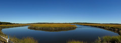 Scarborough - Salt Marsh Tidal Stream Panorama (Drriss & Marrionn) Tags: travel scarborough capeelizabeth usa seaside coast maine landscape landscapes saltmarsh tidalmarsh tidalstream water sky bluesky colours bright grass trees marsh blue color charlielevel1