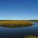 Scarborough - Salt Marsh Tidal Stream Panorama