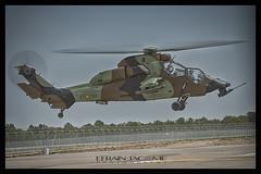 Tigre FAMET, Eurocopter, Albacete (ES) (EFRAIN A. JACOME Q.) Tags: ejército aire aviación vuelo albacete eurocopter rotor helicóptero helicopter tigre