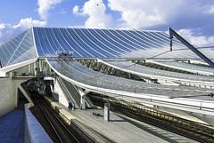 Santiago Calatrava's TGV station Liège Guillemins (RiWiRo) Tags: luik liège lüttich guillemins santiagocalatrava calatrava santiago architecture tgv trainstation station train modern