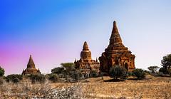 Bulethi temple of Bagan Myanmar-137aa