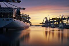 Waltershof 10 (digital_underground) Tags: eurogate hhla walterhof hafen hamburg schiff sonnenuntergang sonne blau blauestunde sunset sun water