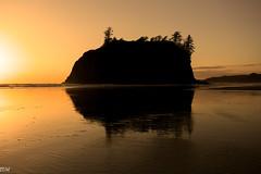 Ruby Beach (MikeWeinhold) Tags: seastack rubybeach beach sunset washington usnationalparks yellow 6d 1740mm