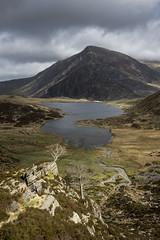 Llyn Idwal (Keartona) Tags: cwmidwal llynidwal sunlight tree penyrolewen mountain landscape wales northwales april walk dramatic scenery scenic uk lake spotlight