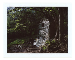 ... (Andrey Timofeev) Tags: 04may2017 mamiya universal mamiyasekor 100mm f35 expired fujifilm fp100c iso 100 usebefore201611 rangefinder дальномер polaroid land camera back instant colour pack film crimea крым