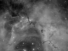 Rosette Nebula close-up (NGC2237) in Hα (Carballada) Tags: astrophotography astronomy deep space astro celestron zwo as1600mmc skywatcher ts sky qhy qhy5iii174 pixinsight galaxy galaxies astrophoto