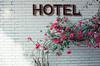 HOTEL (人間遊戲 ‧ 遊戲人間) Tags: canon film filmcamera 135film 135フィルム motionpicture 50mm 500t kodak vision3 analog flower 電影底片