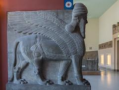Lamassu, Assyrian Winged Bull, Pergamon Museum, Berlin (Peter Cook UK) Tags: 2018 lamassu pergamon assyrian museum germany bull winged pergamonmuseum berlin art
