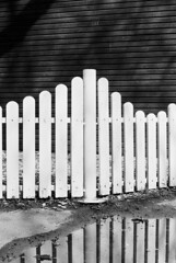 Complements (Thomas Listl) Tags: thomaslistl blackandwhite biancoenegro noiretblanc fence filmphotography analog minoltax700 ilford delta100 50mm water reflection lines stripes wall wood puddle