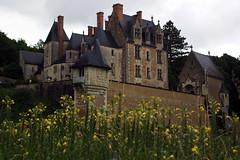 courtanvaux-11 (xtrice) Tags: château courtanvaux bessésurbray sarthe pays ubuntu rawtherapee gimp