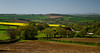 Spring's Patchwork Quilt (suerowlands2013) Tags: callington secornwall agriculture farms fields trees countryside rapeseed crops spring