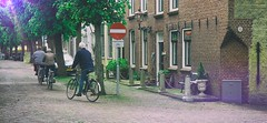 I Want To Ride My Bicycle (Travis Daki) Tags: cycle bike cycling man biker street building tree riding day outdoors netherlands