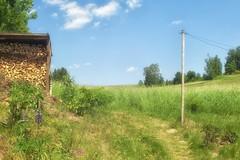 """Foveon / Weltblick f=24mm 1:2.5 (alex """"heimatland"""") Tags: sigma sd15 weltblick f24mm 125 spiratone pluracoat mitake spira 24mm 25 mitakon outdoor wolken oberlausitz cunewalde herrnsberg"""