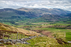 Wall and Fence. (Tall Guy) Tags: tallguy uk unescoworldheritagesite ldnp lakedistrict cumbria skiddaw