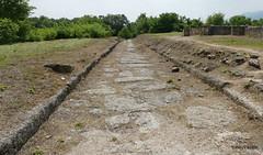 Episcopal Basilica Road, Dion  (2).JPG (tobeytravels) Tags: alexanderthegreat alexander3rd macedon macedonia thucydides brasidas orpheus hellenistic cranicos leake