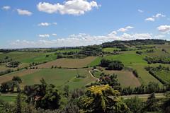 Dolci colline - Sweet hills (Roberto Marinoni) Tags: dozza bologna emiliaromagna appennino apennines colline hills verde green erba grass cielo sky nuvole clouds bellitalia