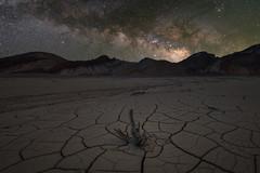 Milky Cracks (RyanLunaPhotography) Tags: california deathvalley fuji fujifilm nationalpark socal southerncalifornia xt2 desert landscape dvnp