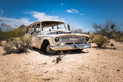 Lanfair Road, Mojave National Preserve, California (paccode) Tags: california unitedstates us solemn d850 forgotten dump desert colorful bushes nationalpark brush serious creepy quiet mojave abandoned wreck