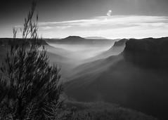 the escarpment 8 B&W (Mariasme) Tags: monochrome blackandwhite thebluemountains scape landscape valley sunrise challengeyouwinner cyunanimous memorial