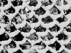 a short story about my garden, last winter (ignacy50.pl) Tags: blackandwhite winter fence snow pattern plants garden outdoor minimal abstract