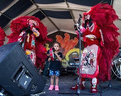 The Golden Eagles Mardi Gras Indians at the New Orleans Jazz and Heritage Festival on Sunday, April 29, 2018
