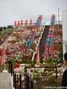 (takafumionodera) Tags: em1 flower mishima mishimaskywalk olympus omd park shizuoka 三島 三島スカイウォーク 公園 花 静岡