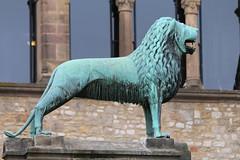 Brunswick Lion (Rick & Bart) Tags: oslar germany deutschland niedersachsen city urban rickvink rickbart canon eos70d historic architecture unescoworldheritagesite sculpture statue standbeeld lion brunswicklion