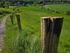 The fence (diarnst) Tags: landschaft weg zaun zaunpfahl wiese grün felder landscape path fence post meadow green fields