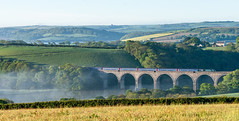morning mist on the Lynher (Rails West) Tags: 125 cornwall fgw125 locations lynher viaduct