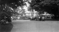 Jardin du Capitole vers 1975 - Photographie de Georges SULTRA (Mémoires d'Autan) Tags: languedoc toulouse jardindu capitole bancs