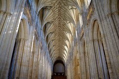 Winchester Cathedral (RapidSpin) Tags: architecture gothic winchester vault rib ribbed ceiling pillars polygonal capitals tudorstyle arches vertical mullions church building wynford d7100 cathedral nave