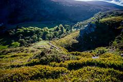 Ireland Roadtrip (sxdlxs) Tags: ireland roadtrip wicklow glendalough nikon nikond500 d500 nature landscape spring