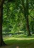 Bruges Park (Panasonic Lumix TZ200 Travel Compact) (1 of 1) (markdbaynham) Tags: belgium bruges brugge bruggen westflanders flemish city citybreak historic famous panasoniclumix panasonic panasonictz200 panasoniccompact tz200 zs200 1 1inch travelcompact fixedzoom zoomlens urban metropolis