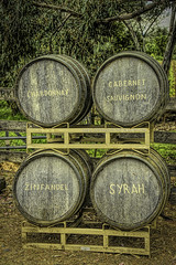 "WineList_01 (DonBantumPhotography.com) Tags: landscapes wineries winetime orovillecalifornia grapes ""donbantumphotographycom"" ""donbantumcom"" ""nikon afs nikkor 28300mm 13556g ed vr"" longcreekwinery d800"""