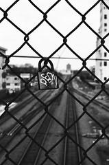 Peon on the fence (Thiophene_Guy) Tags: thiopheneguy originalworks nikon film fm2 ferraniap30alpha nikon50mmf18