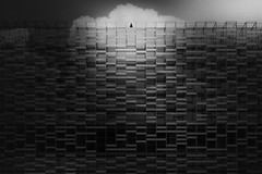 ...facedtoclouds... (*ines_maria) Tags: background black sky business city downtown clouds cloudy contrast destination facade from below geometric architecture geometry glass house life lines luxury majestic material milan modern building design perspective power progress reflective windows residential roof tall top travel urban bw blackandwhite monochrome panasonic dcgh5 urbanart