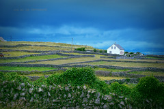 "Inis Oirr, Clare, Ireland (alice 240) Tags: inisoirr clare europe ireland irish nikon greenscene imagen ngc nationalgeographic ""nikonflickraward"" flickr travel tourism green poetry magic dream landscape simplysuperb"