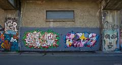 IMGP9763 Street Art (Claudio e Lucia Images around the world) Tags: murales graffiti streetart milano vialemonza ferrovia via pontano milanese pentax pentaxk3ii sigma sigma1020 pittura face faccia murale art viapadova padova persone muro
