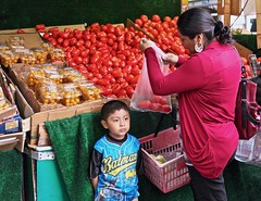 shopping for tomatoes (susanjanegolding) Tags: tomato motherandchild shopping foodshopping produce fruitstand batman tomatoes citylife citymarket outdoormarket boy vegetables vegetablestand market