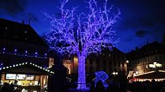 Glowing Blue (nakyaonthego) Tags: christmaslights christmas blue sky strasbourg france weihnachtsmarkt christmasmarket